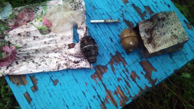 Две гранаты отыскали унаркомана, схваченного заизготовление опия