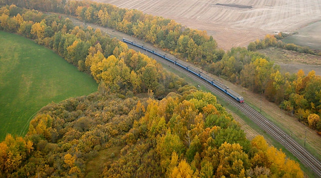 Лес поезд