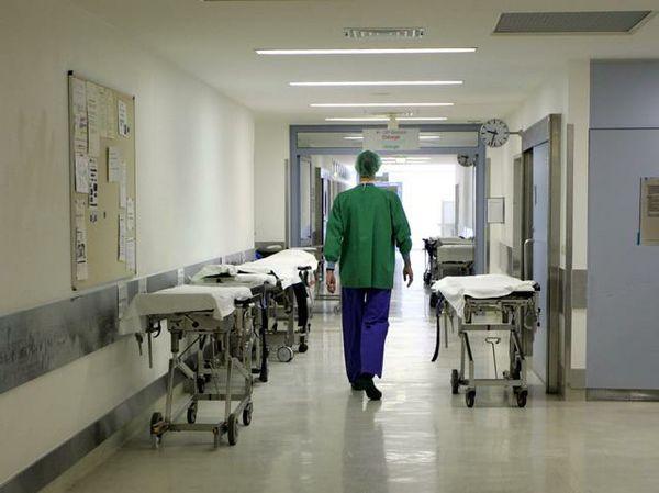 Вспышка трихинеллеза вБрестской области: в клинику попали около 30 человек