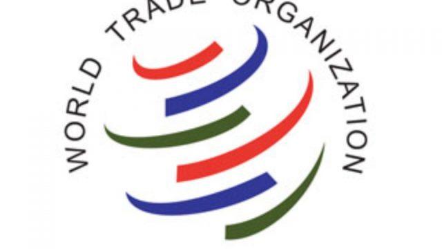 Стало известно, когда Беларусь может вступить воВсемирную торговую компанию