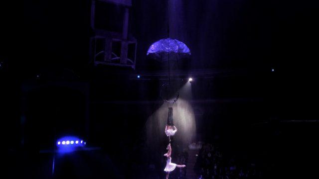 Инцидент в цирке