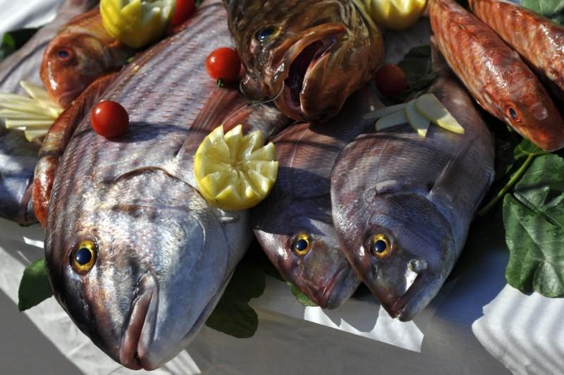 Беларусь увеличила экспорт рыбы в РФ в15 раз