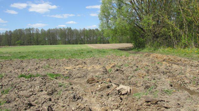 останки в поле