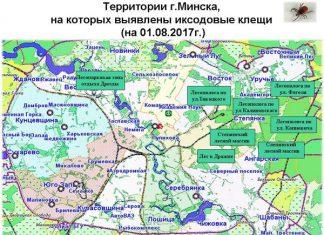 Карта_клещи