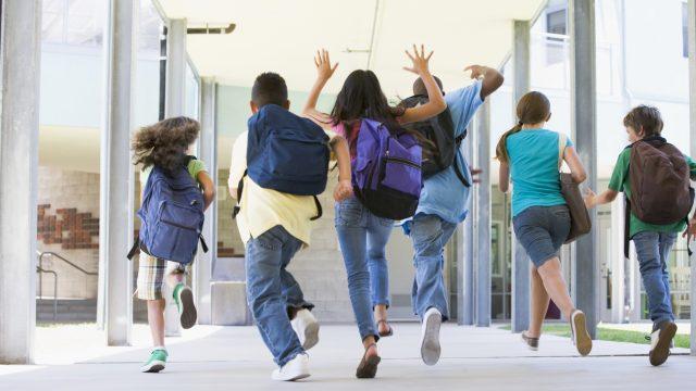 Осенние каникулы для школьников Беларуси продлятся 10 дней