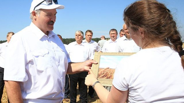 Лукашенко в поле