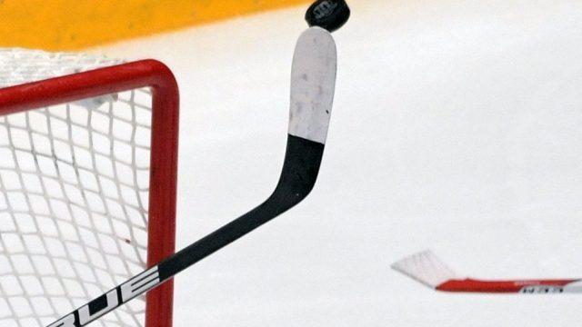 Сборная Чехии одолела команду Беларуси вматче МЧМ