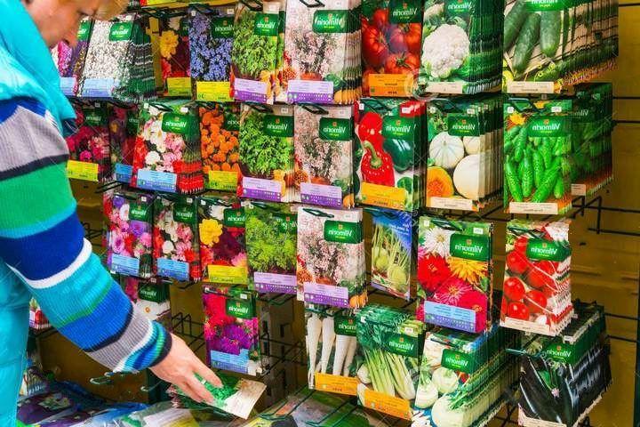На что обратить внимание при покупке семян?