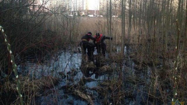 застрял в болоте