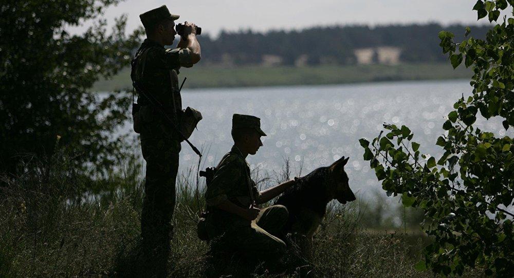 Собака и пограничники
