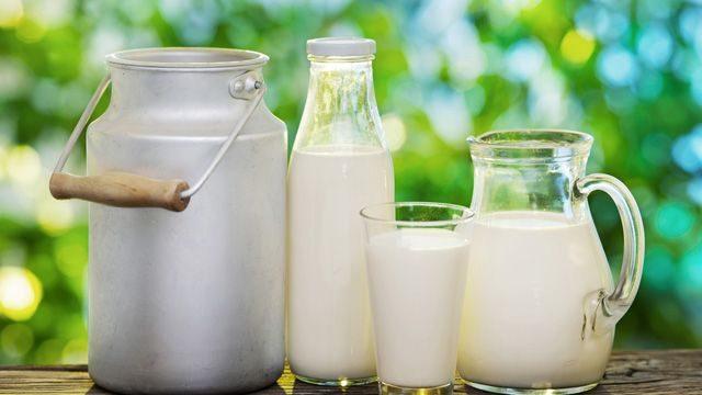 молочные подукты