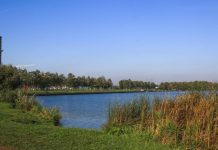 Водохранилище Дрозды