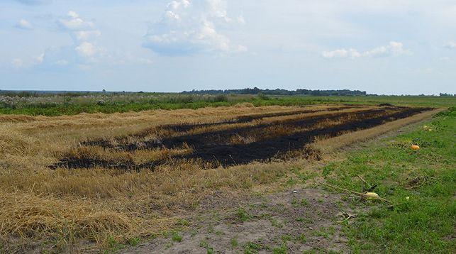 Огонь на поле