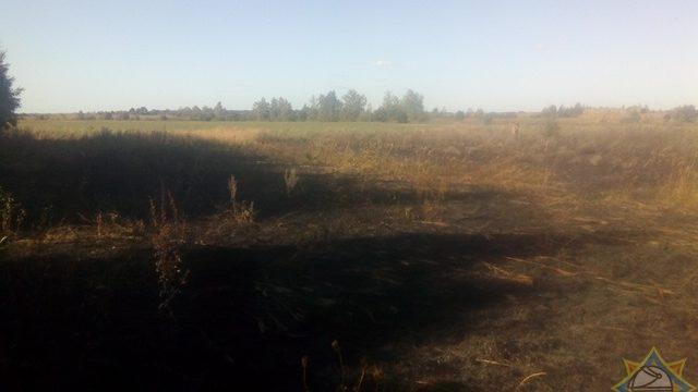 загорелась трава